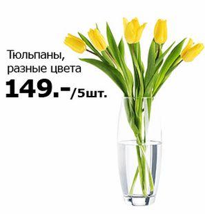 Скидки и акции в ИКЕА на цветы