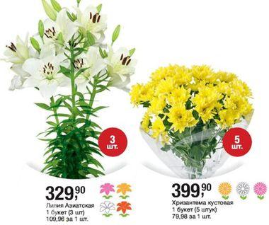 Скидки и акции в Metro на цветы