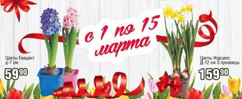 Скидки и акции в РеалЪ на цветы