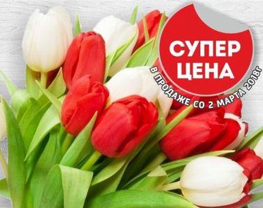 Скидки и акции в РиОМАГ на цветы
