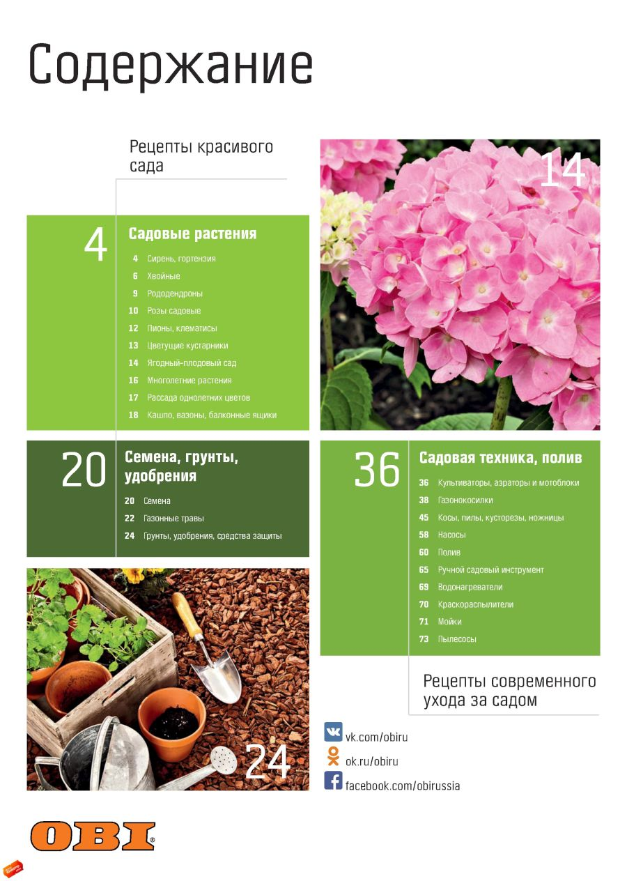 Каталог садовых цветов с и цены
